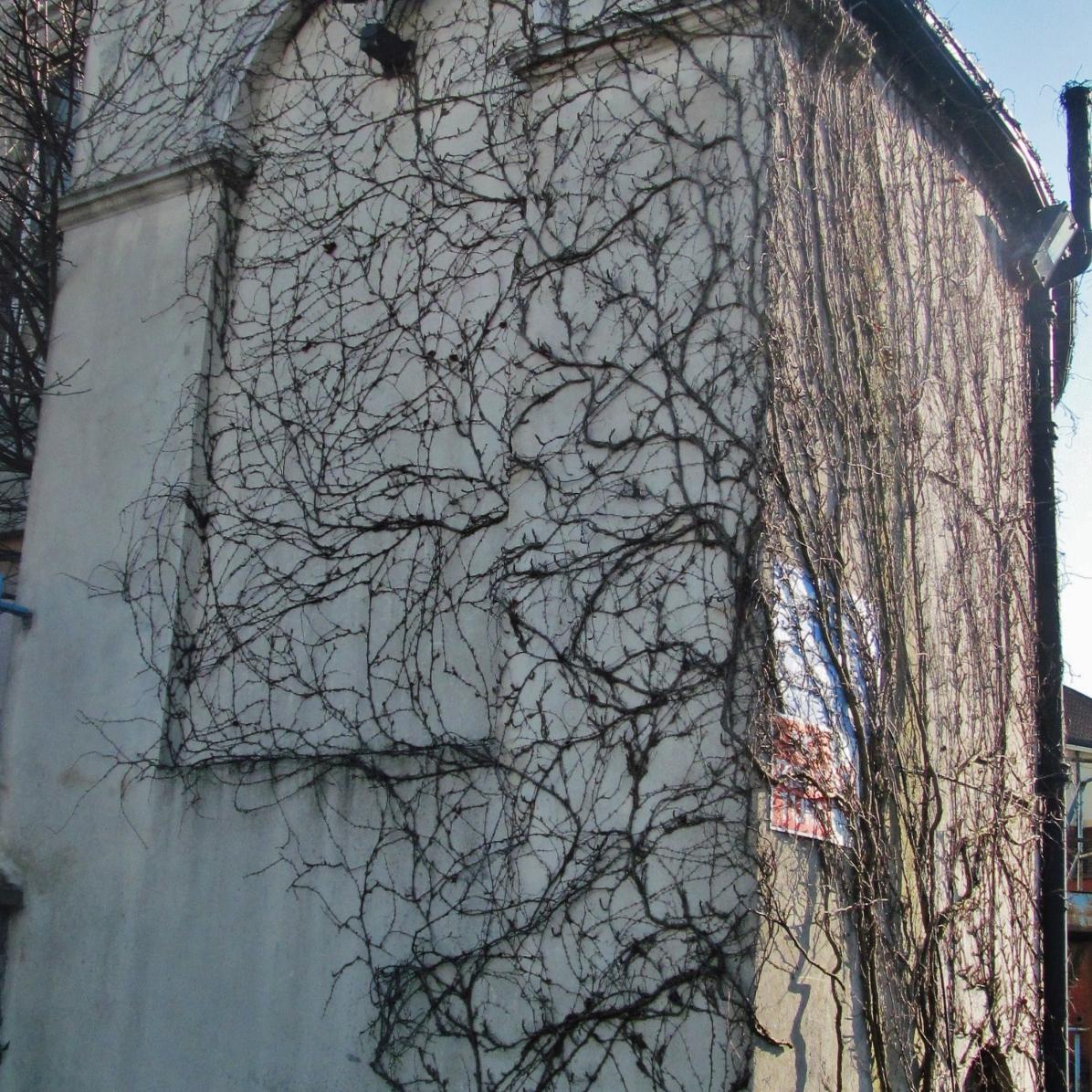 Abandoned Aldborough House, Dublin (Ireland) - Derelict World Photography – Lainey Quinn